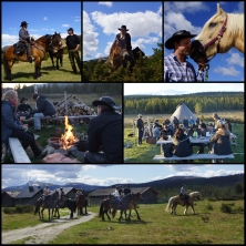 Herding of cattle in Rondane National Park with Sulseter Riding Camp